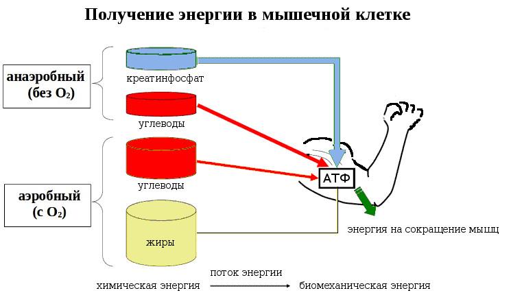 energie_2.jpg